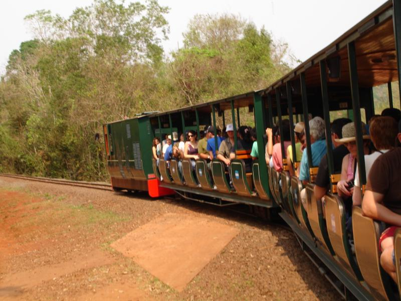 Ecological jungle train. Argentine side
